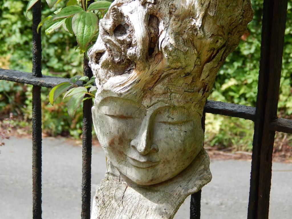 crook hall gardens